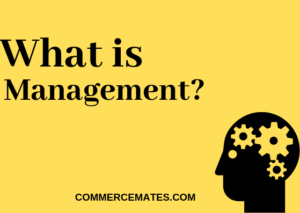 What is Management? Definitions, Characteristics, Function