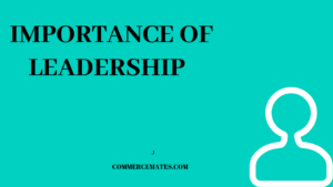 Importance of Leadership In an Organisation