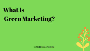What is Green Marketing? Importance, Advantages, Disadvantages
