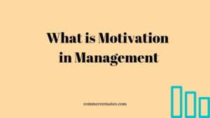 What is Motivation in Management