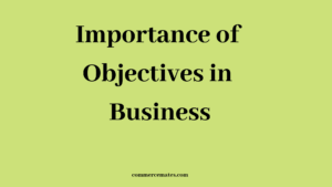 Importance of Objectives in Business