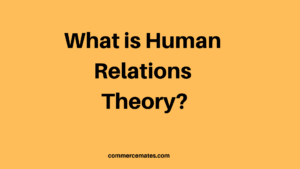 Advantages and Disadvantages of Human Relations Theory