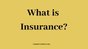 Importance of Insurance to Business