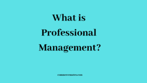 What is Professional Management?