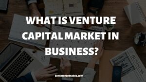 Venture Capital Advantages & Disadvantages