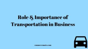 Role and Importance of Transportation in Business