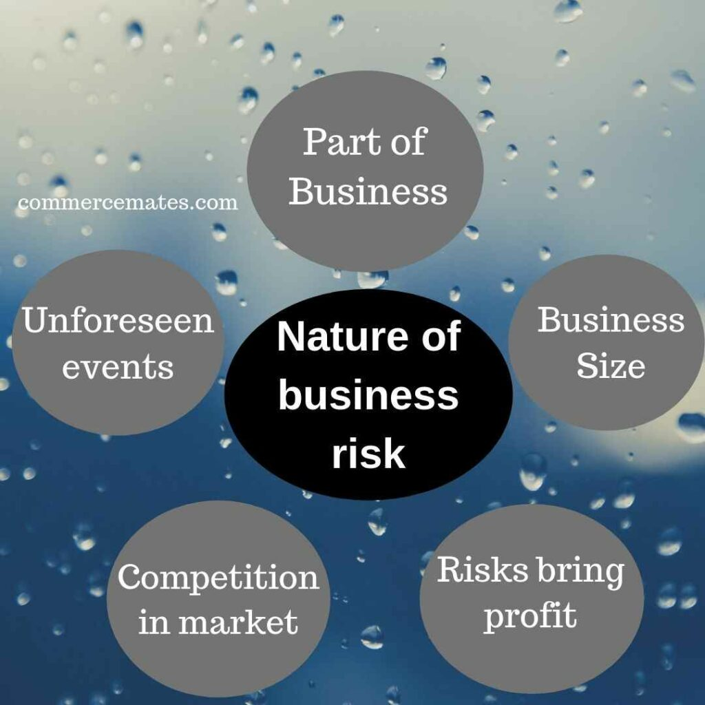 Nature of business risk