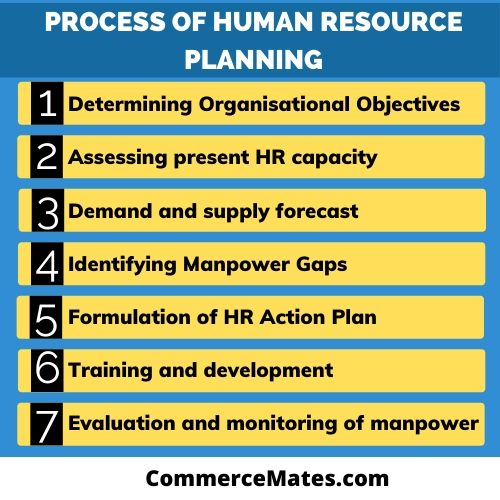 Process of Human Resource Planning