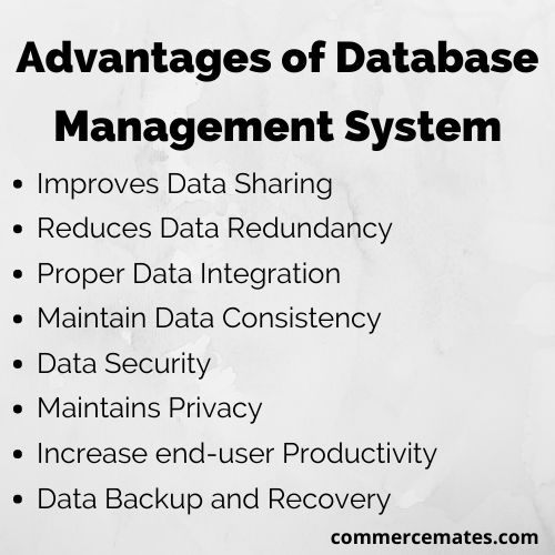 Advantages of Database Management System