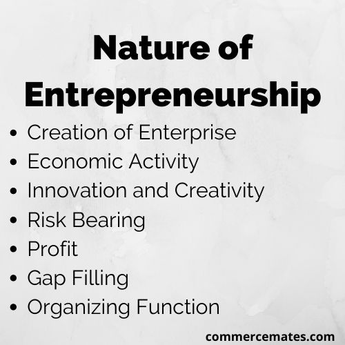 Nature of Entrepreneurship