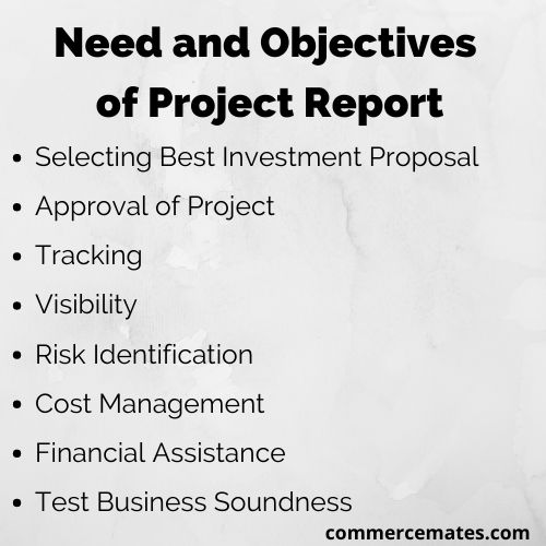 Need and Objectives of Project Report