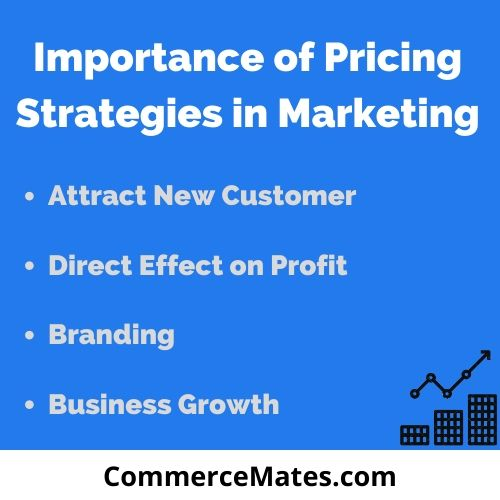 Importance of Pricing Strategies in Marketing